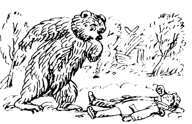 Мой знакомый медведь