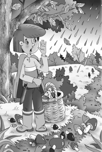 Грибное лето